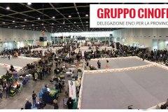 EXPO20TRIS20